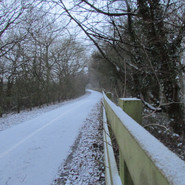 the-winter-path_8489401198_o.jpg