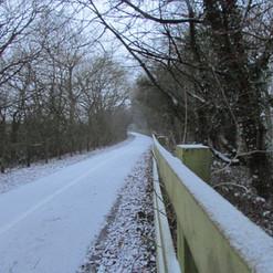 the-winter-path_8489401198_o.jpg