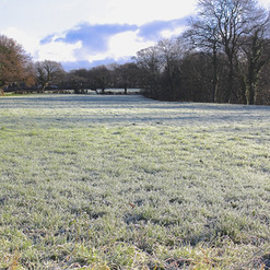 frozen-field_16376564299_o.jpg