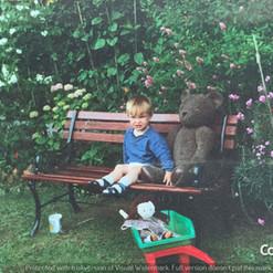 Cometan Beside The Bear.jpg