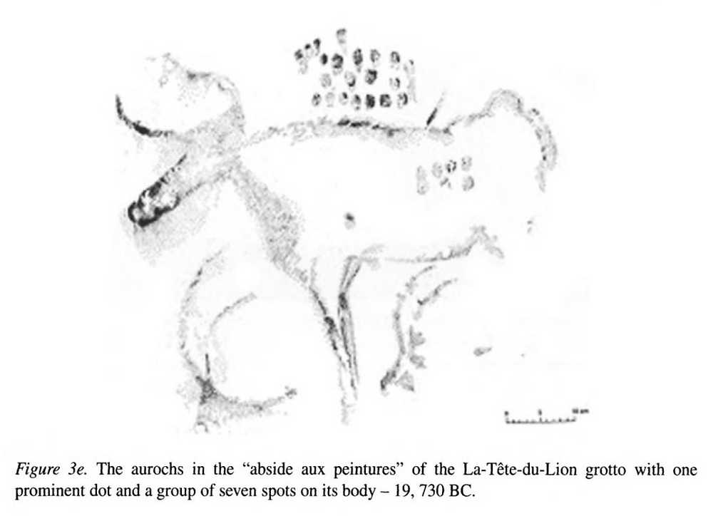 Figure 13b – Pleiades Aurochs specimen. Sample Two.