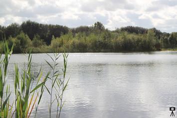 Brockholes Lake