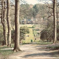 harlow-carr-gardens-uk_18475477173_o.jpg