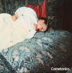 Baby Cometan Sleeping On The Sofa.jpg
