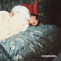 Baby Cometan Sleeping On The Sofa.jpg