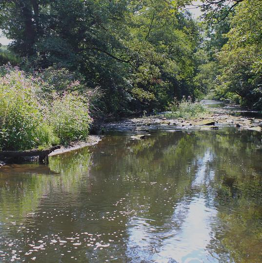 gleaming-river_15075770282_o.jpg