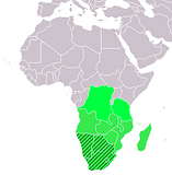 Astronism in Southern Africa is the presence of the Astronist religion in countries in Southern Africa, including South Africa itself, Botswana, Eswatini, Lesotho, and Namibia, as part of the worldwide Astronist Institution.