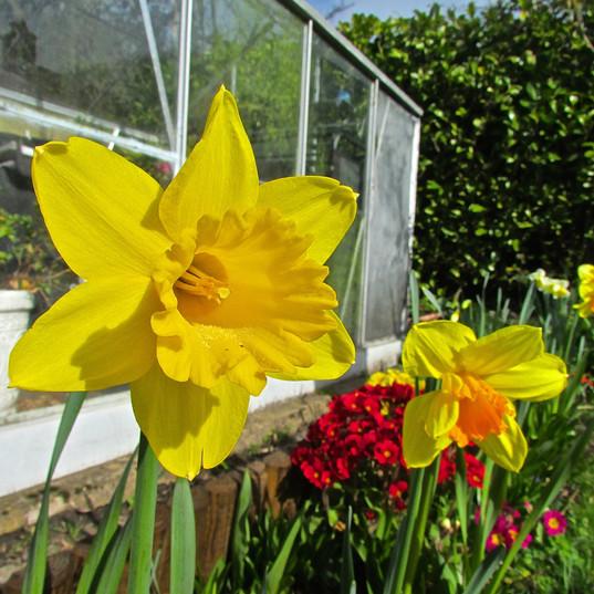 spring-scene_13870491175_o.jpg