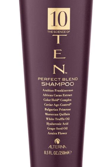 Alterna 10   Perfect Blend Shampoo