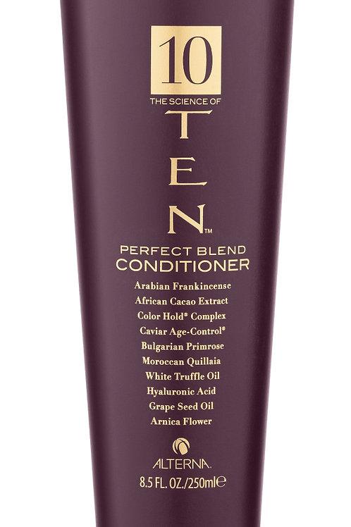 Alterna 10 | Perfect Blend Conditioner