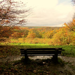 autumn-view_11051382813_o.jpg