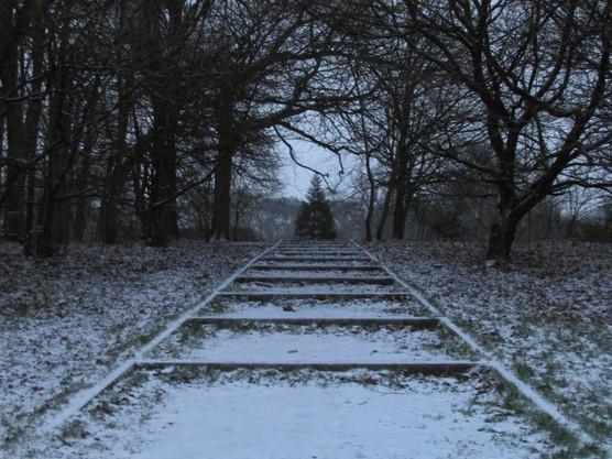 the-steps-lead-the-way_8489406124_o.jpg