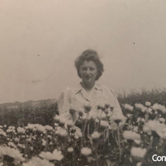 Monica Bolton, Great Aunt of Cometan, In