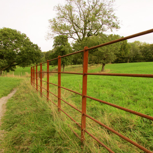 red-fence_10841574465_o.jpg