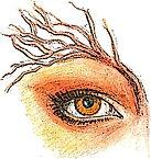 Eye Poster CV_edited-1.jpg