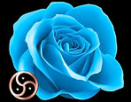Blue rose 3 con triskel. NEGRO WEBpsd.jp