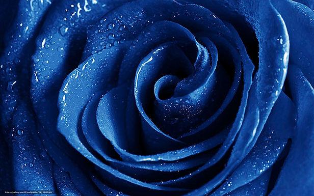 Leyendas de la rosa azul