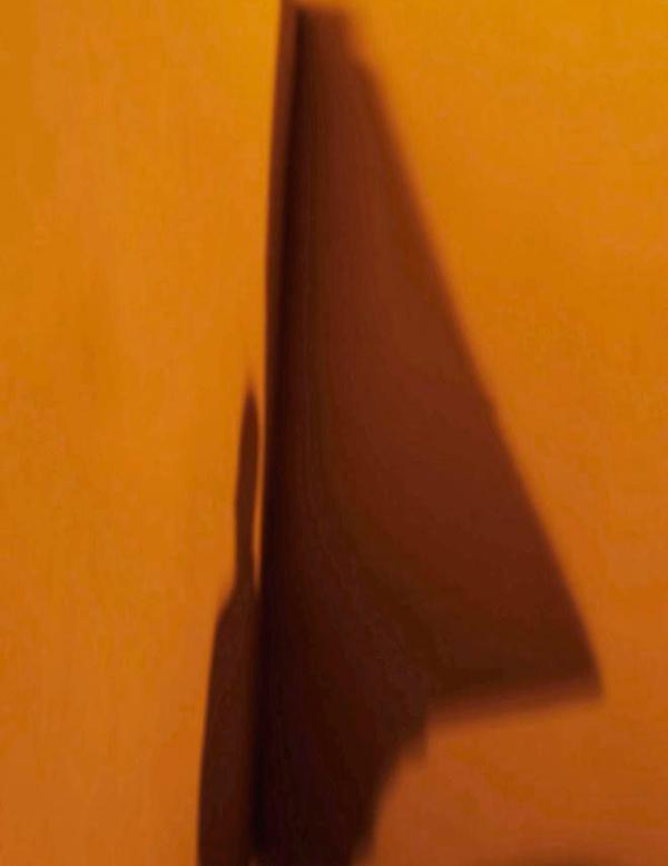 Rosario Camus | Photography | Larimar Art Gallery | Oaxaca de Juárez, Mexico