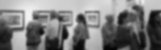 Exhibitions | Larimar Art Gallery | Oaxaca de Juárez, México