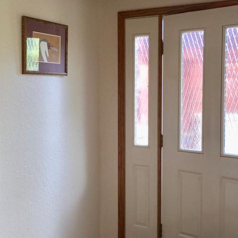 Front Door (Before)