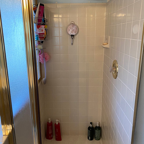 Master Shower Remodel (Before)