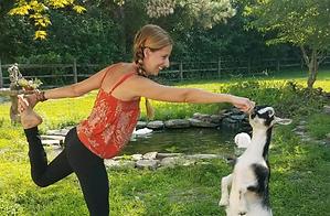 goat yoga.png