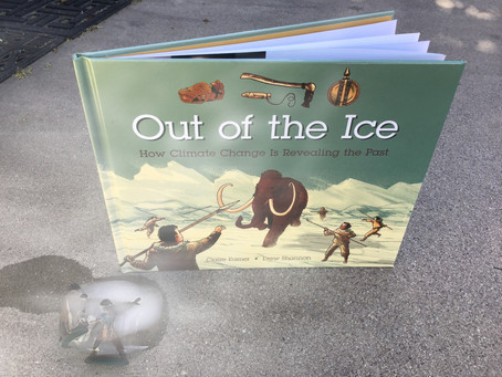 Out of the Ice (Review)