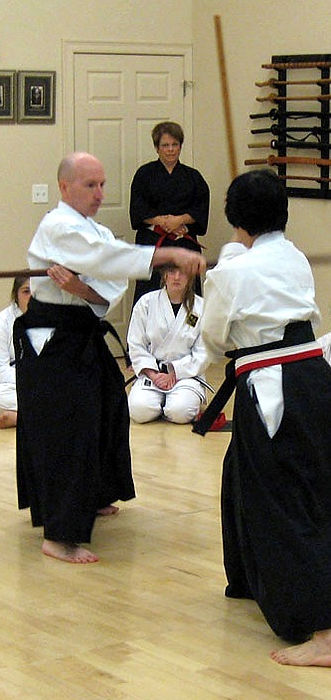Traditional Weapons Kobudo