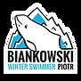 ikonka_wordPress_biankowski.png