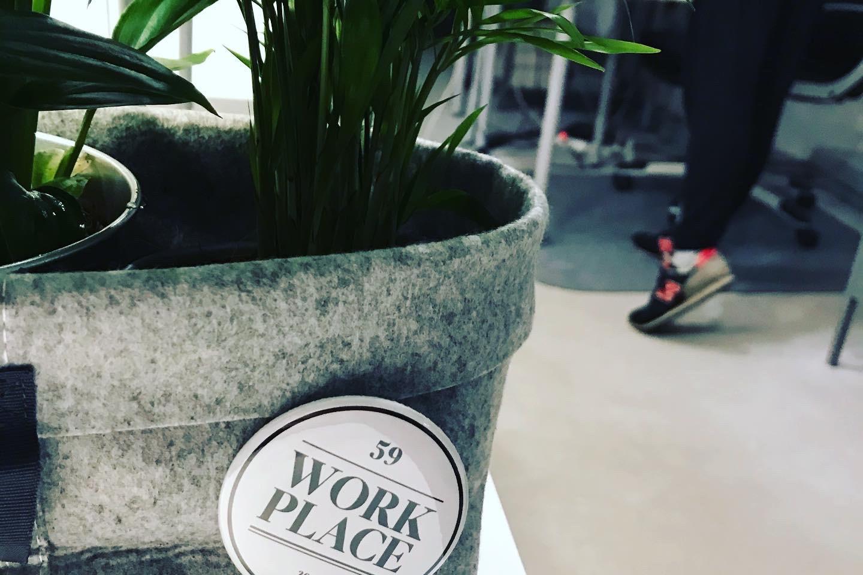 Kwiatki w Work Place 59