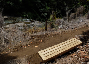 Great addition to Wairoa Stream track