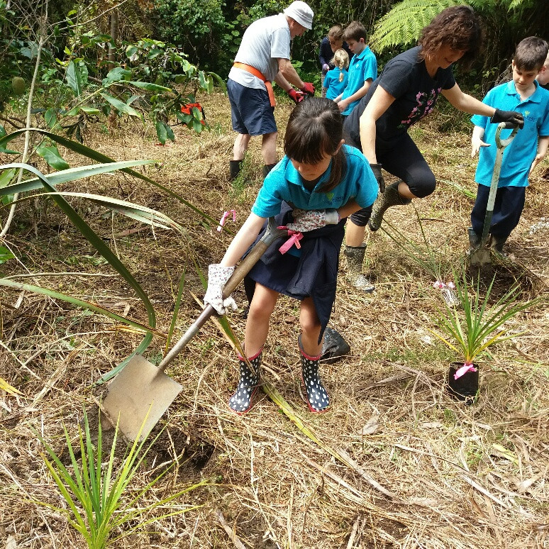 Kerikeri Primary School planting