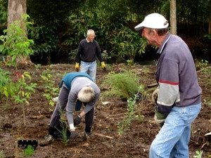 Seen on the web: Community benefits from tree planting