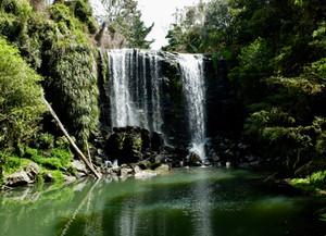The Bridge to Te Wairere Waterfall