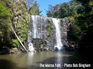 Te Wairere waterfall / Wairoa Stream  Walking Track