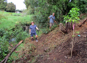 Wairoa Stream - Public Planting Day - Rescheduled to Sunday, 26 June
