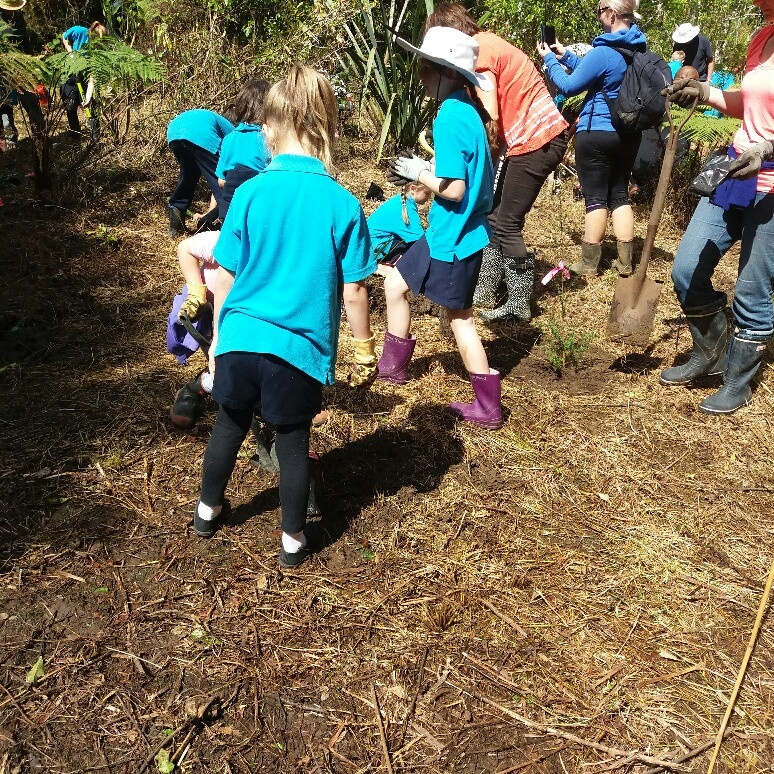 Kerikeri Primary School pupils planting alongside the Wairoa Stream 2017