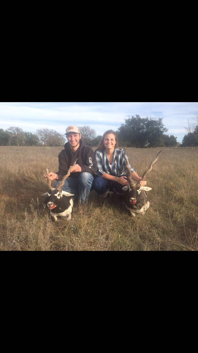 Blackbuck Hunt!