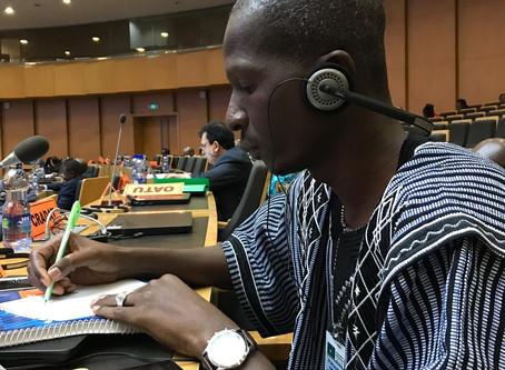 RZMAPS et WSM donnent de la voix à la 3ème session de la CTS-DSTE de l'Union Africaine