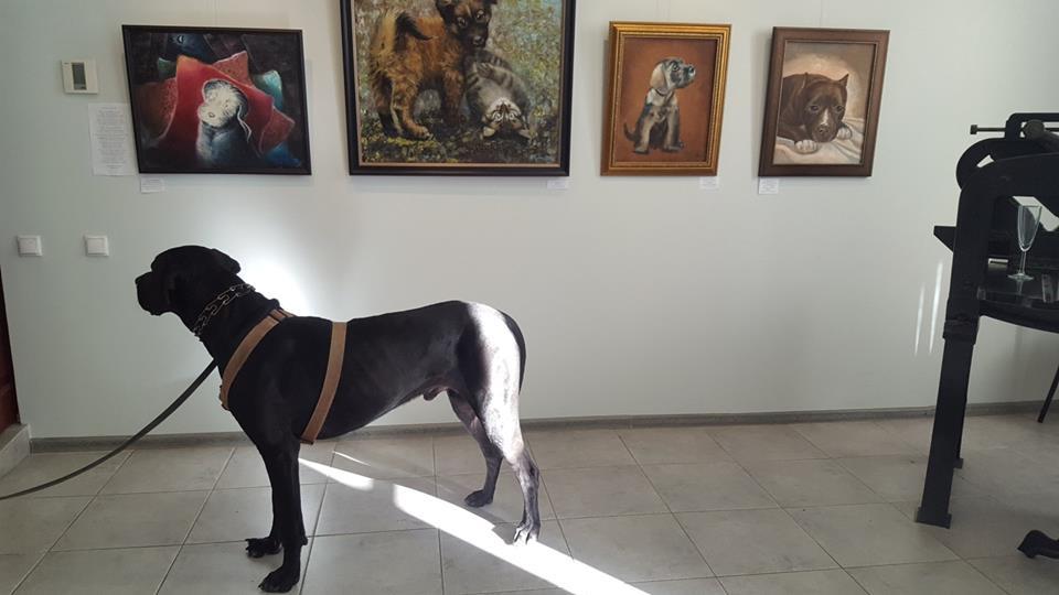 """Открытие выставки """"Собачья жизнь"""""""