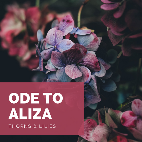 Ode To Aliza