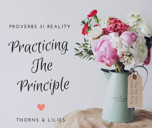 Practicing The Principle