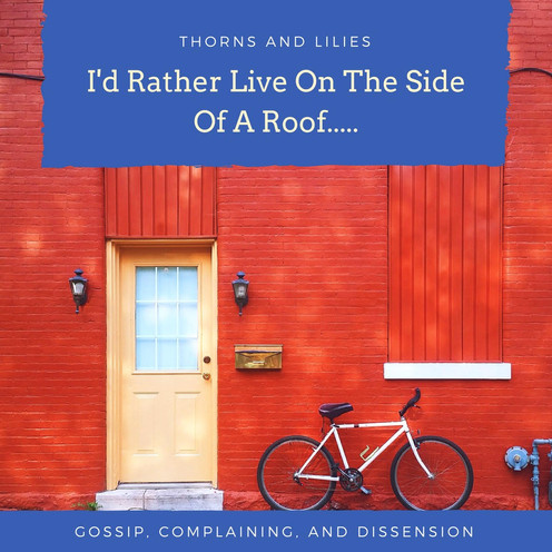 I'd Rather Live On The Side Of A Roof.....