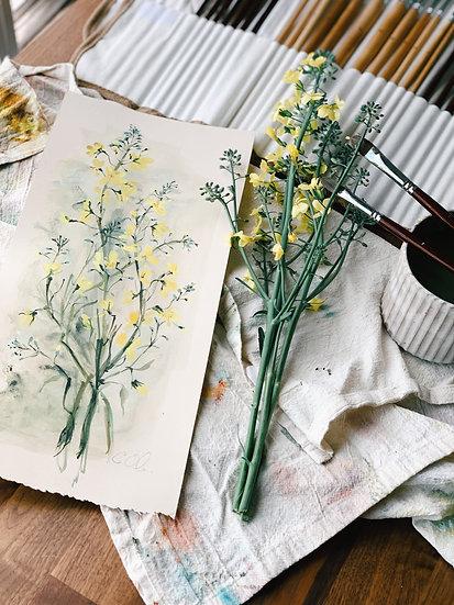 Broccoli Flower Study