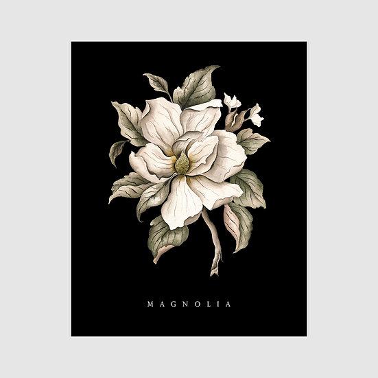 Magnolia in Black