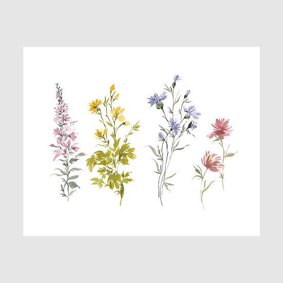 Wildflowers 10 x 12