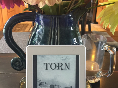 REVIEW: Torn by Lory Lilian