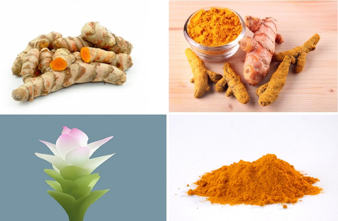 Tumeric The Queen Of the Spices