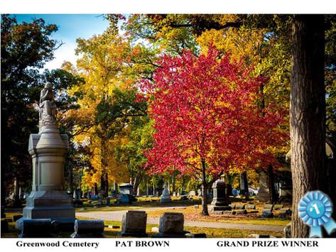 A beautiful fall in Hamilton