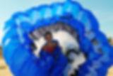 Djerba sur plage 1206web.jpg